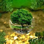Consultoria ambiental licenciamento ambiental