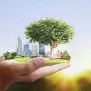 Empresas de consultoria ambiental em campinas