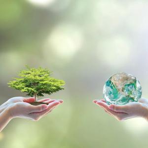 Orçamento para licenciamento ambiental